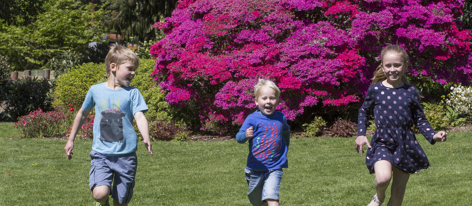 Springtime family fun on the lawn