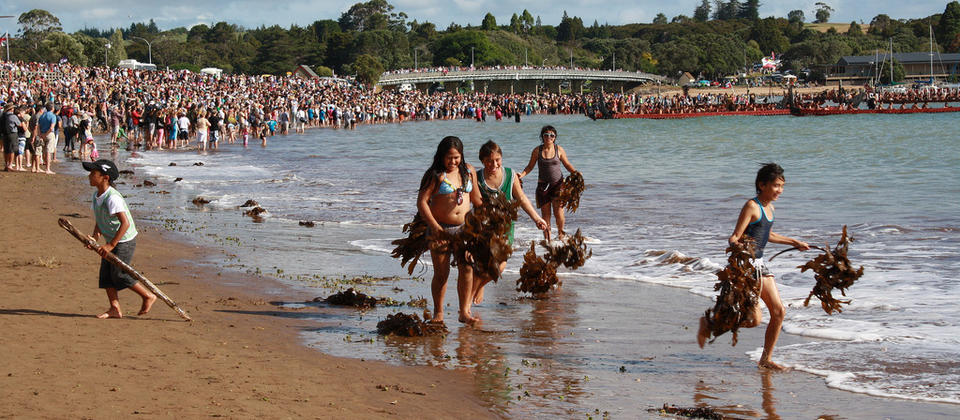 Waitangi Day in the Bay of Islands