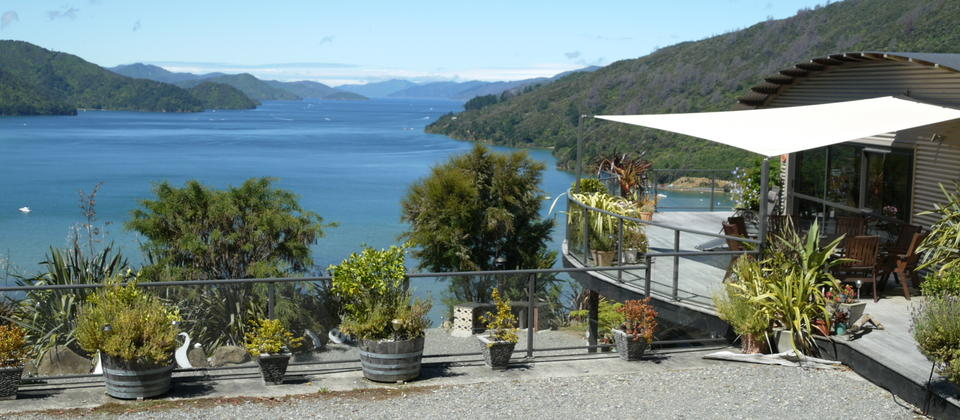 Enjoy the natural beauty of the Queen Charlotte Sound