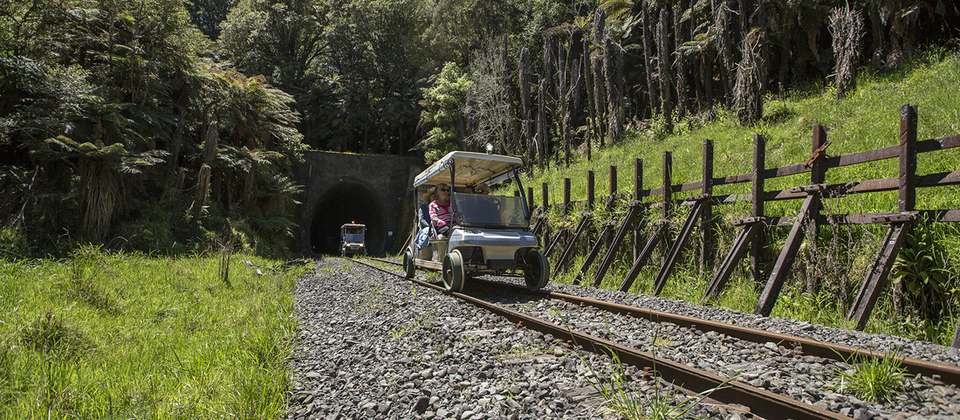 Cart-in-Tangarakau-Gorge.png