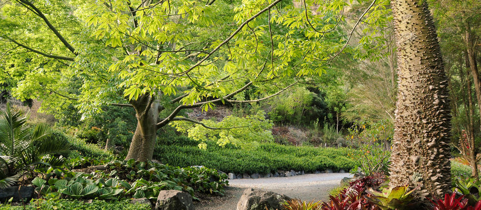 A peaceful walk through stunning Gardens