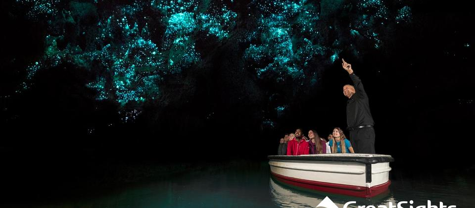 The enchanting Glowworm Grotto