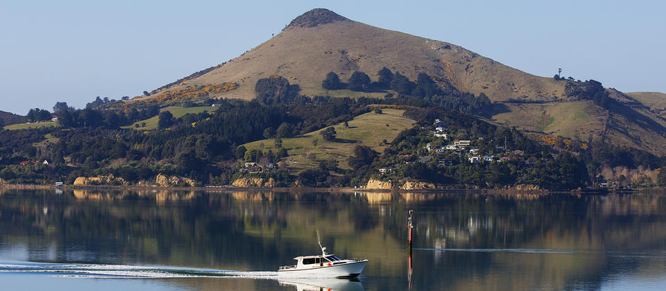 The VJ cruising down the scenic Otago Harbour
