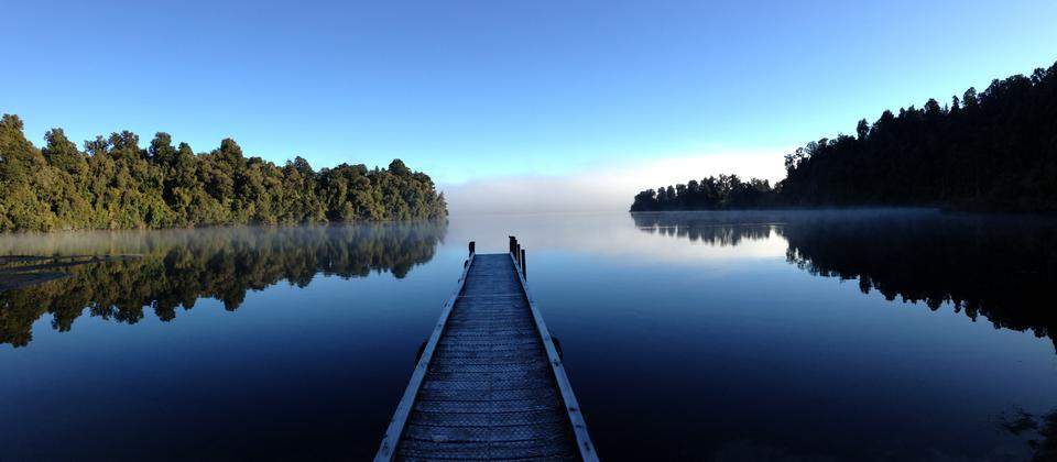 The early bird captures the first light of dawn - Lake Mapourika