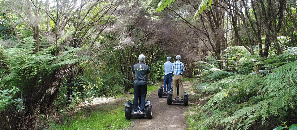 See the sights the Segwai Way - Waiheke ECO Tours