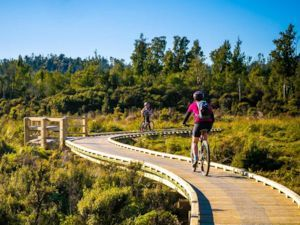 Cycle the West Coast Wilderness Trail with Adventure South