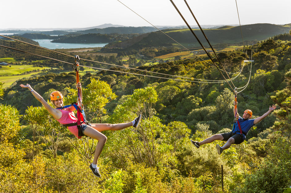 Ziplining through native bush on Waiheke Island.