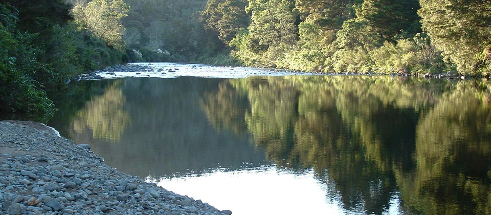 The Waiwawa river runs down one side of the campground