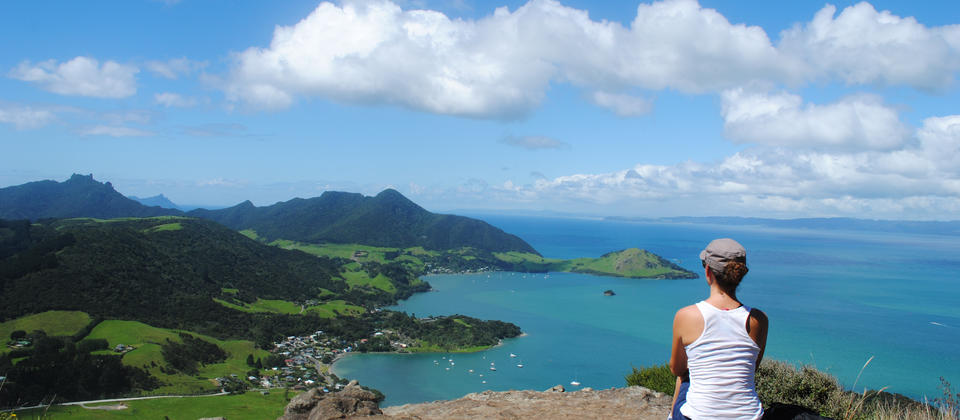 View from Mt Manaia