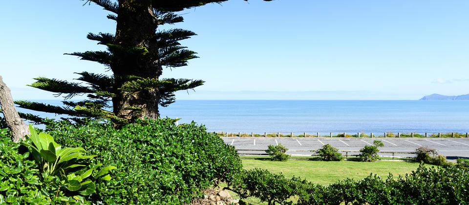 Paekakariki Beachfront Bed & Breakfast