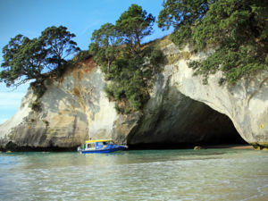 Experience a close encounter at Cathedral Cove.