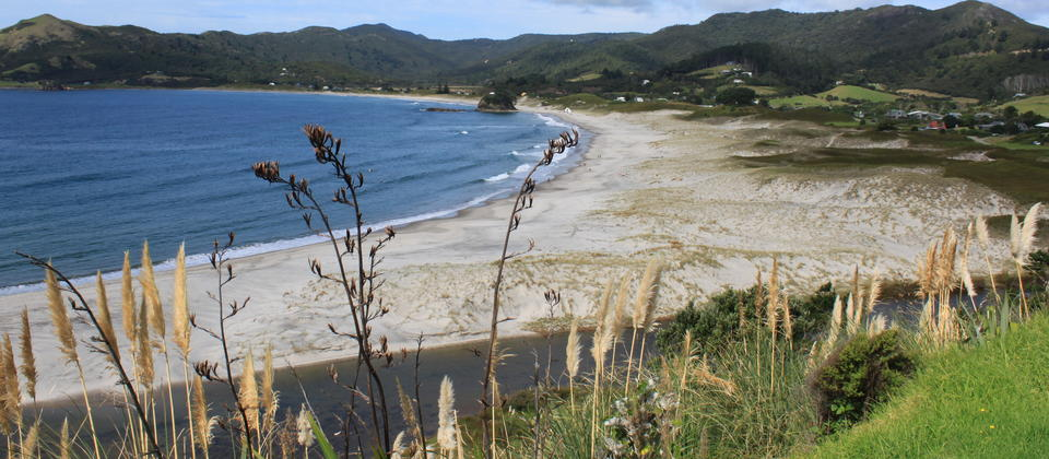 Medlands Beach, Great Barrier Island