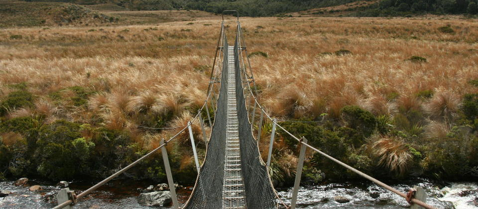 A bridge over a river on the Heaphy Track in Kahurangi National Park.