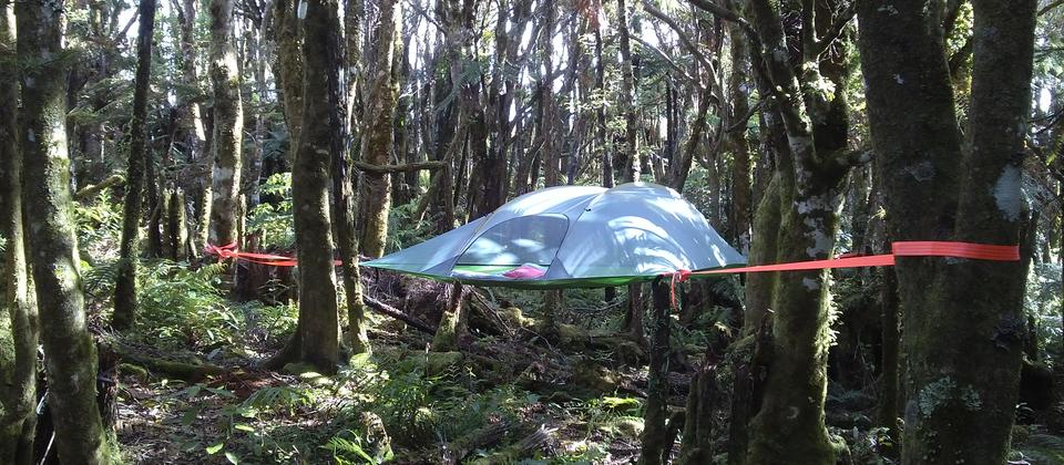 Glamping in the Pupu Rangi Nature Sanctuary