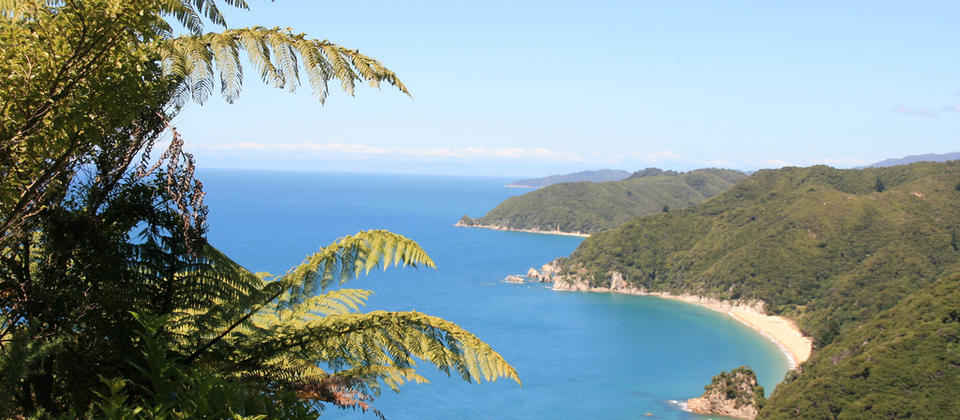 View over a wonderful bay in the Abel Tasman National Park