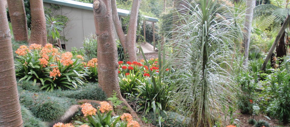 5 acres of award winning subtropical garden