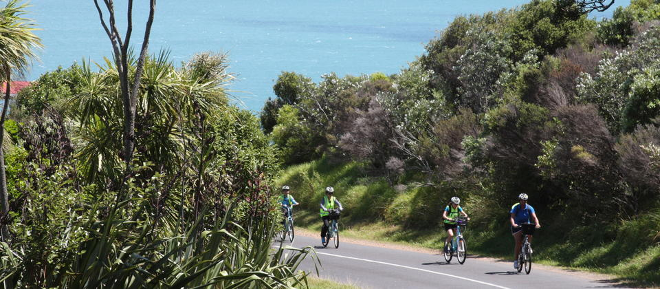 Cycling on Waiheke Island