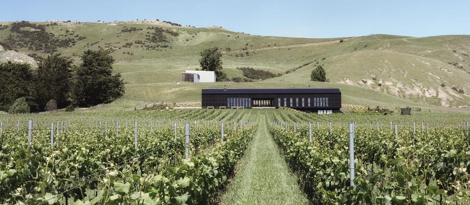 Black Estate Cellar Door & Restaurant, overlooks their organic vineyard, Waipara Valley to the Southern Alps.