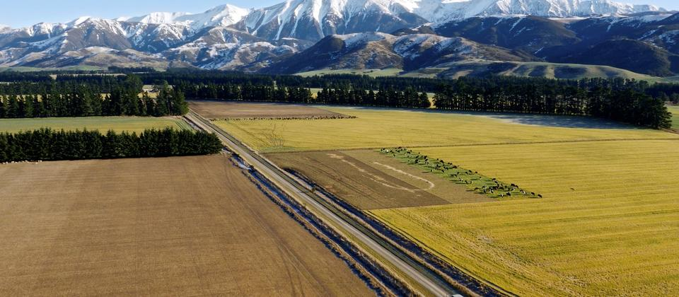 Enjoy a fun 4WD adventure in the Southern Alps.