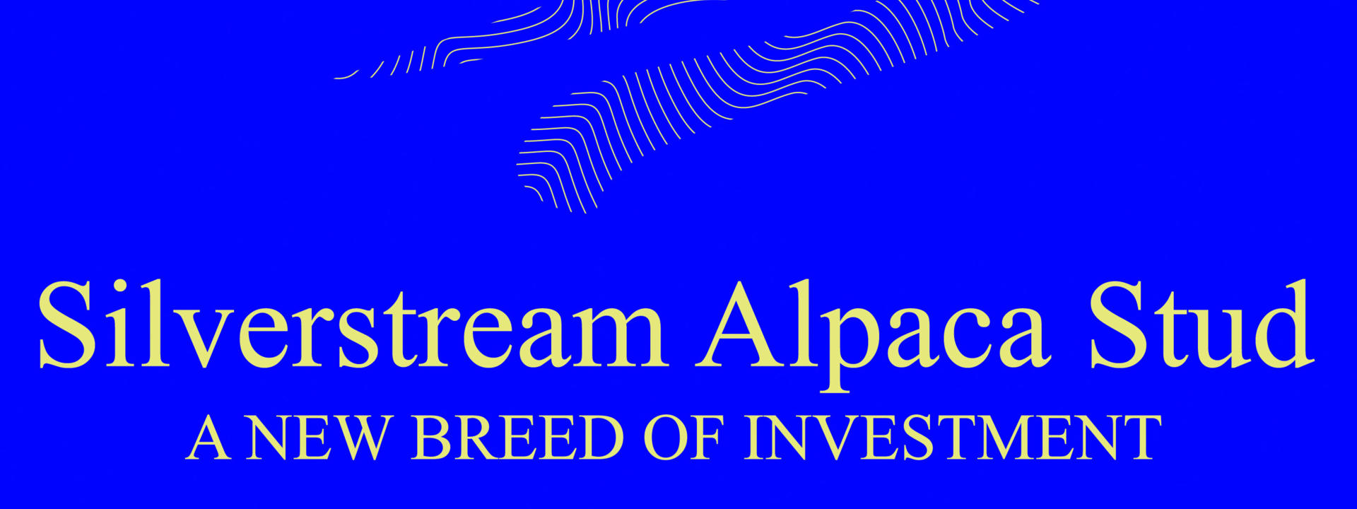 Logo: Silverstream Alpaca Farmstay