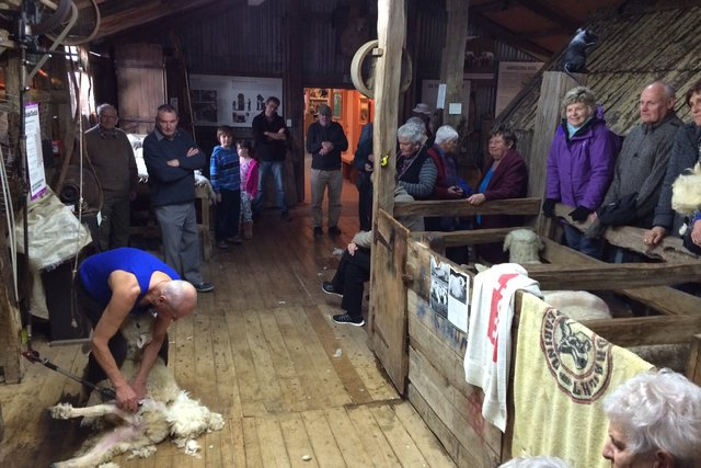 The Wool Shed National Museum Of Sheep And Shearing