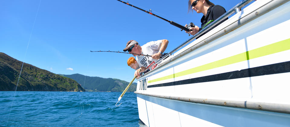 Fishing charters in the idyllic Queen Charlotte Sound with Sounds Connection.