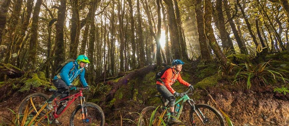 Mountain bikers on Paparoa Track