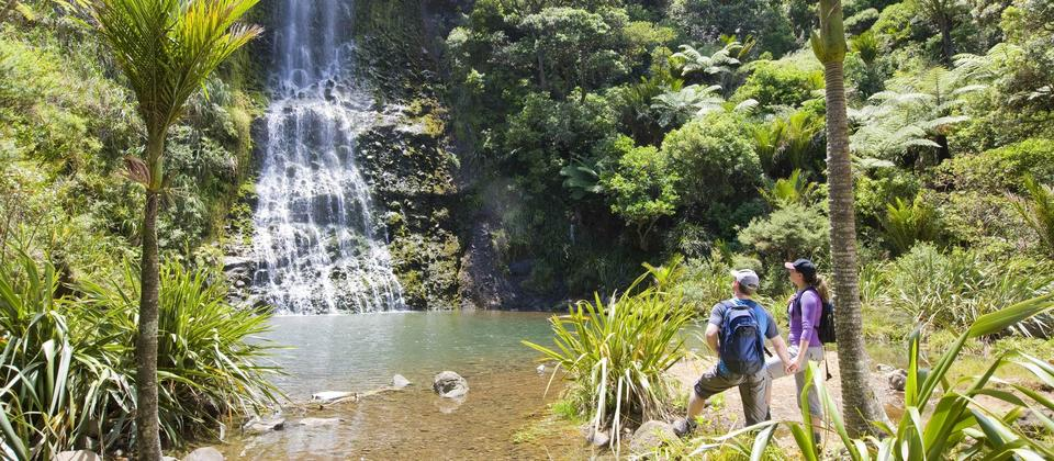 Auckland Full Day Tour with TIME Unlimited Tours - see beautiful NZ Scenery in Auckland