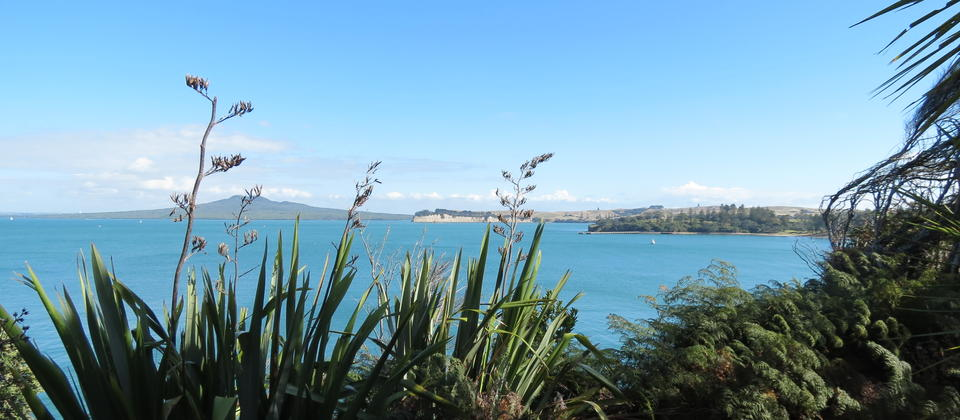 View of Rangitoto from Motuihe