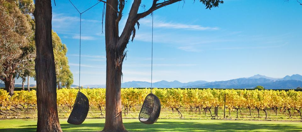 Cloudy Bay Winery, Marlborough