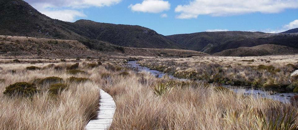 The beautiful Heaphy Track in Kahurangi National Park, New Zealand.