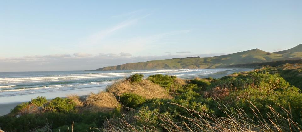 The stunning beauty of the Otago Peninsula