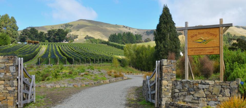 Entrance to Valley Road Vineyard