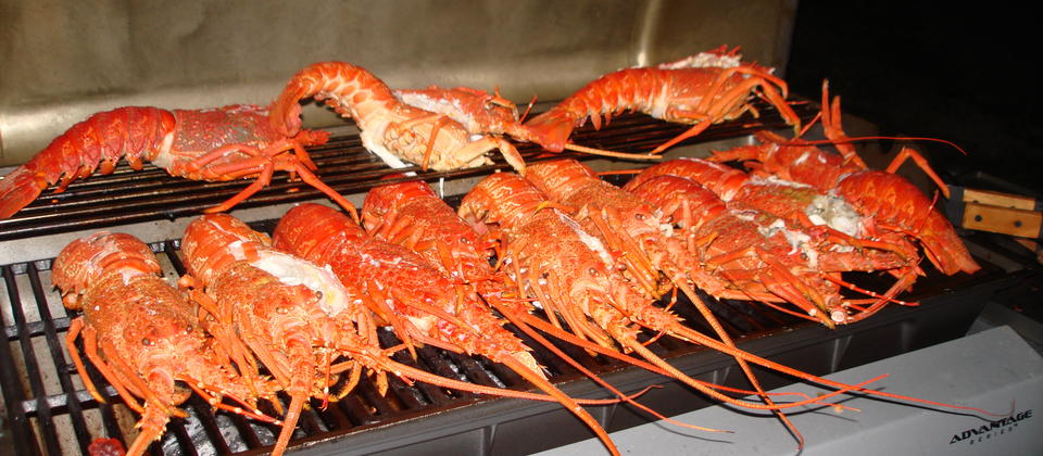 Local 'lobster' or crays as we call them in New Zealand!