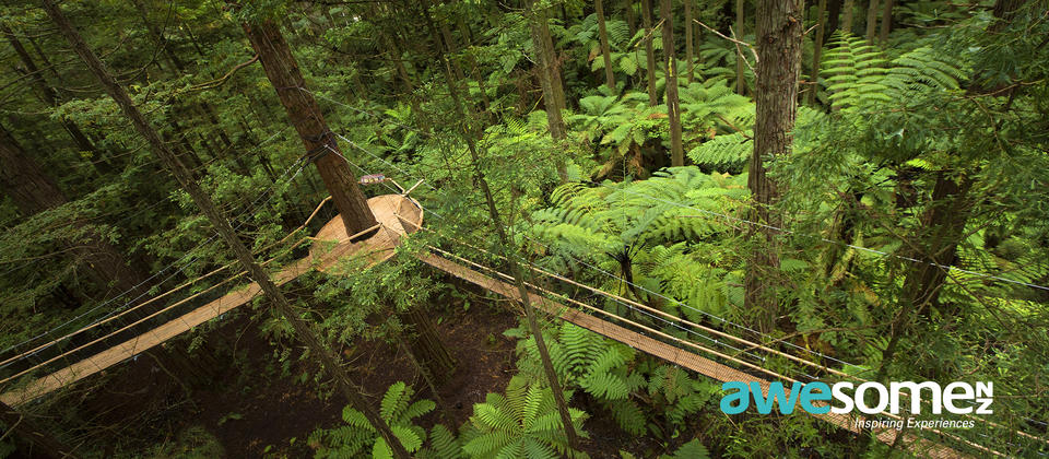 Customise your tour with unique add-ons such as the Rotorua Treewalk
