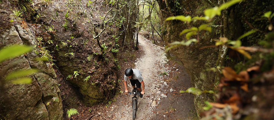 Waihora_Mountain_Bike_Trail_Image_1U0A0642.jpg
