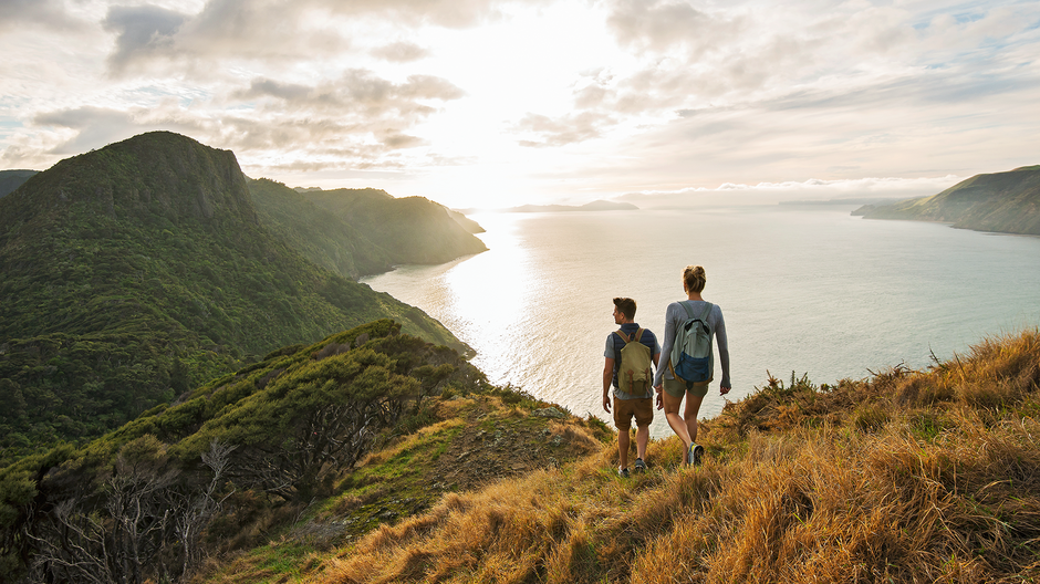 Walking in the Waitakere Ranges in west of the city is rated among the best things to do when you're visiting Auckland.