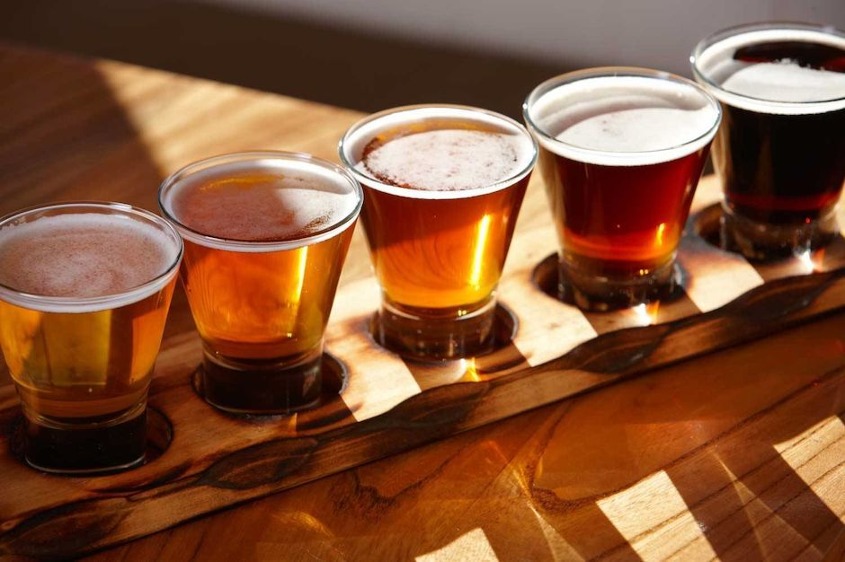 Beer Paddle, Auckland Beer Tours