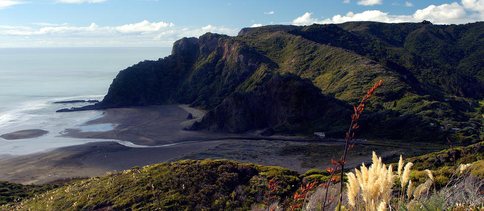 The breathtaking Karekare beach in Auckland's Waitakere Ranges was made famous in the 1993 movie The Piano.