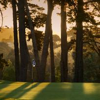 Established in 1931, the parkland-style Remuera Golf Club has a rich tradition of offering a magnificent experience.