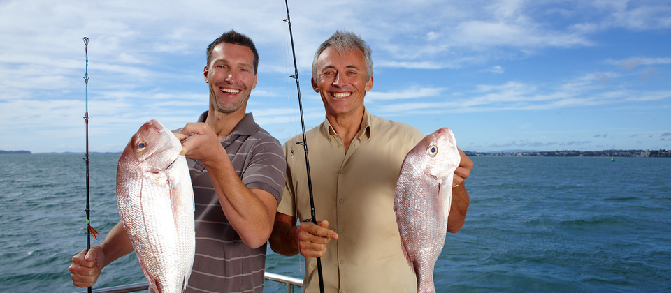 Snapper is a delicious eating fish and is commonly caught in the Hauraki Gulf.