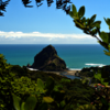 Lion Rock at Piha Beach