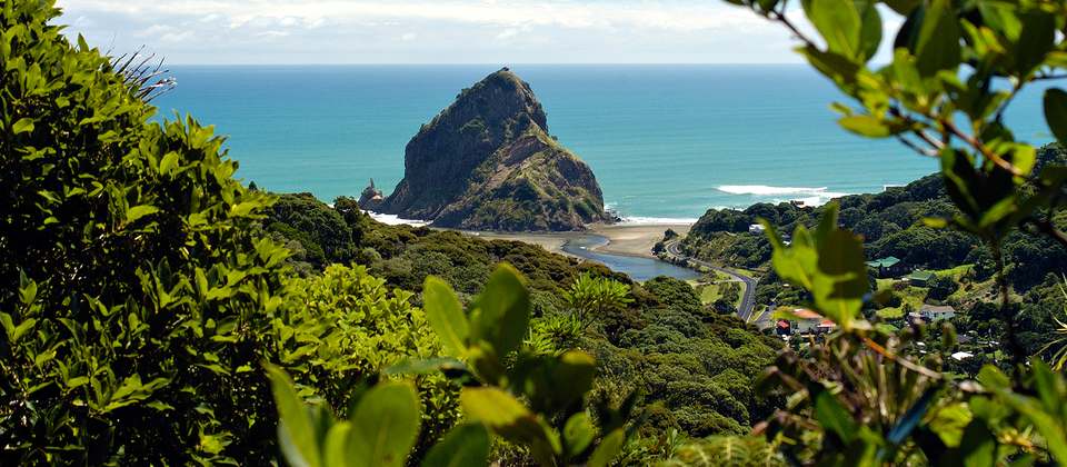 Lion Rock, Piha, Auckland