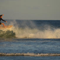 Surfing on Great Barrier Island