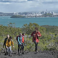 Rangitoto Summit Track