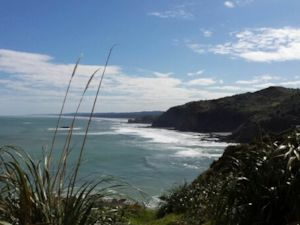 Views to Muriwai, Te Henga Walkway