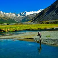 Clear rivers flowing from the Southern Alps create an ideal environment for trophy-sized wild trout.