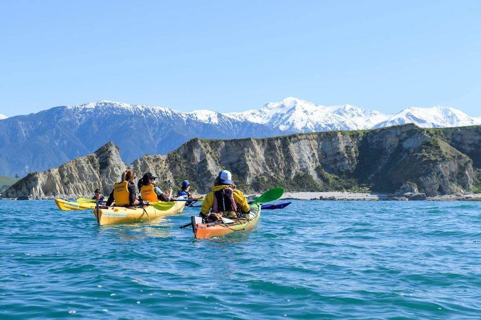 Kayak tour with Kaikoura Kayaks