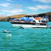 Akaroa Harbour Nature Cruise boat