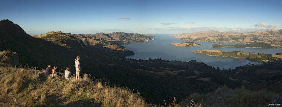 Walking the Port Hills